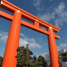 京都を代表する風景の一つ