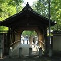 写真:東福寺 臥雲橋