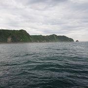 鯛が生息する世界的に珍しい場所