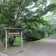 ◯◯跡が多い公園