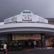 パイナップルを買いに訪問しました。
