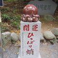 写真:高尾山 ひっぱり蛸