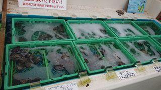 小湊の海産物販売店