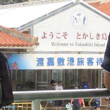 渡嘉敷港も写真です。