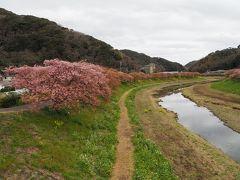 下賀茂温泉のツアー