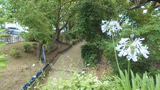 元茨木川緑地