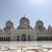 美しい白亜の芸術的寺院