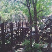 ベンメリア遺跡の7月の観光ツアーが素晴らしい