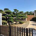 写真:野崎家別邸たい暇堂