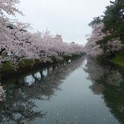 東北桜鑑賞旅行唯一の雨日なのに一見の価値ある桜の数々