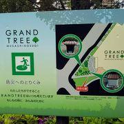 「グランツリー武蔵小杉」の防災への取り組みに感心