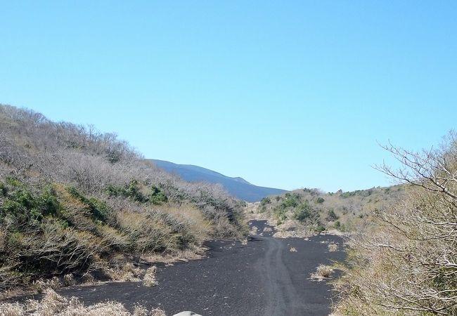 月と砂漠ライン