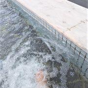 展望フロアに足湯があります