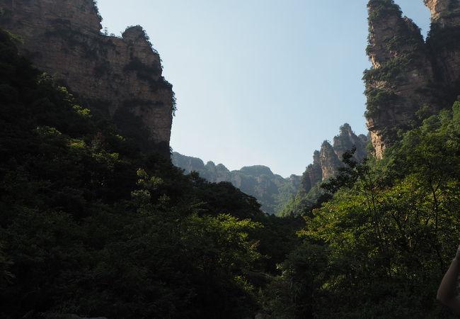 索渓峪自然保護区
