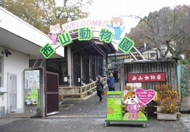 2017年11月 西山動物園 心の安らぎ旅行♪