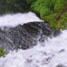 近くで水量が多いという迫力はあります。