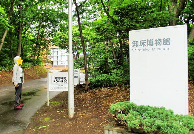 斜里町立 知床博物館