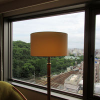私の客室からは徳島中央公園、JR車両基地、遠くには海