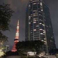東京タワーが綺麗に見えます