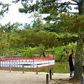 写真:東大寺 鏡池