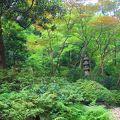 初めてシェラトン都ホテル東京の日本庭園を散策しました