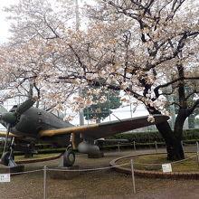 入り口までの道には多くの寄進石塔や桜がいっぱい。