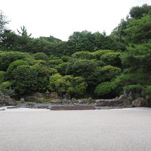 金地院庭園 (鶴亀の庭)
