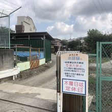 今は貴重な横浜の釣り堀に