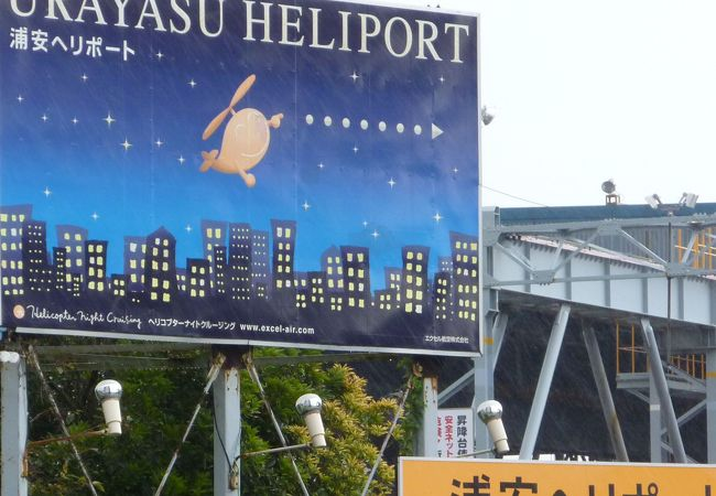 エクセル航空東京  ヘリ コプター ナイトクルージング