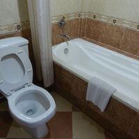 バスルーム。古いけど不潔ではない