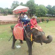 象の背中は高い!@アユタヤ エレファントキャンプ