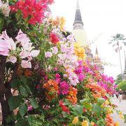 綺麗な寺院@ワット ヤイ チャイ モンコン (チャオプラヤー タイ寺院)