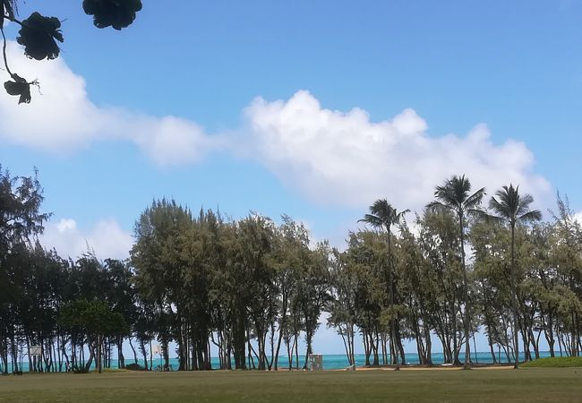ワイマナロ ビーチ パーク