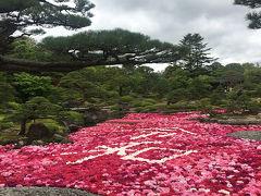 美保関・大根島のツアー