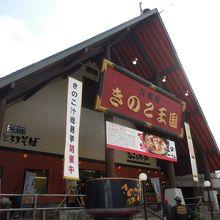 きのこ王国 本店