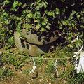 写真:江島神社 奥津宮 亀石