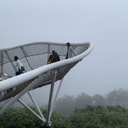 夏のトマムと言えば、雲海テラスです!しかし、雲海が見られる確率はあまり高くないです。