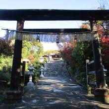 松山神社 (松山市)