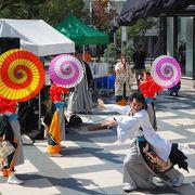 名古屋の暑い盛りに熱く踊りまくる祭