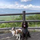 八ヶ岳富士見高原リゾート