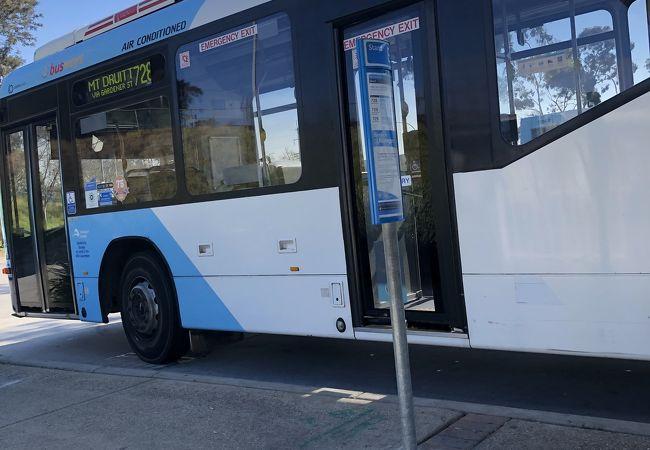 動物園行きバス