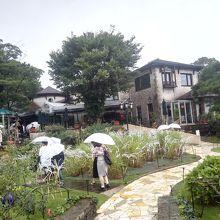 庭の向こうのイタリアンレストランではカンツォーネのライブが。
