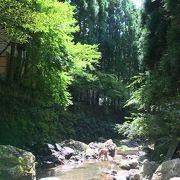 京都市内から近く自然を満喫できる