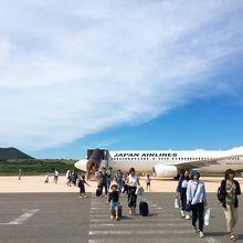 羽田からは無いのに、伊丹空港と出雲空港から直行便が飛んでいる!