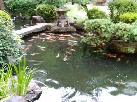 天童温泉 ほほえみの宿 滝の湯 写真