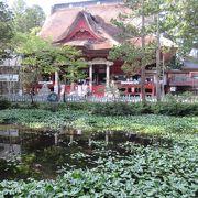 三神合祭殿の撮影ポイント