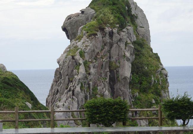 誰もが観る、猿岩