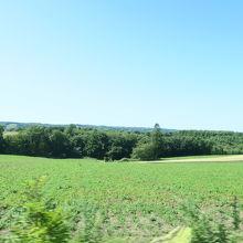 感動の径からみる田園風景