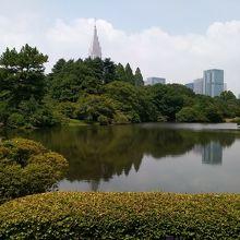日本庭園と新宿の高層ビル