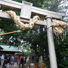 鳥居に巻き付いているのは、1年間本殿に安置されていた大蛇
